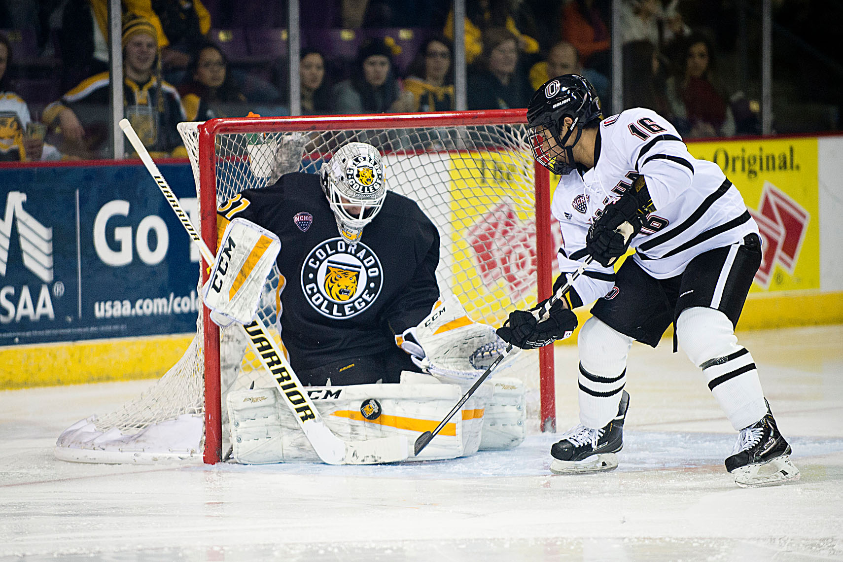 Colorado College Hockey, 2015-16 season